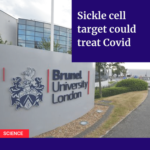 sickle cell covid news post-1